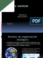 Nivelesdeorganizacionbiolgico 150609223121 Lva1 App6892