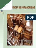 A-Experiência-de-Paragominas-Pólo-Moveleiro-de-Paragominas