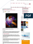 10 tendencias del mundo digital en 2011