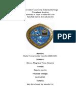 Maria T. Camilo C. Reporte Escrito