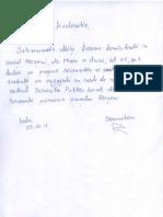 Declaratie Mitu Dorina