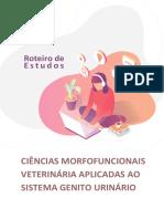 Ciências morfofuncionais do sistema gênito urinário