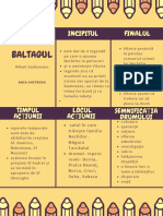 baltagul_poster_concepte_1