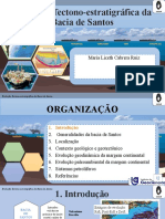 Santos Basin