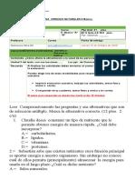 Evaluación Sumativa Ciencias Naturales  5° básico A  B Nutrientes