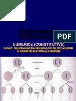 C7 Anomalii cromozomiale numerice