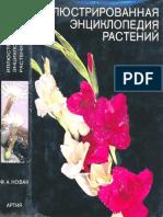 Иллюстрированная Энциклопедия Растений ( PDFDrive )