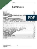 Rapport de Stage Assurance Wafa Assurance