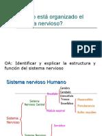 CLASE 1_II°medio_U1