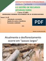 PDF TEMA 1,2  e 3 actualizadas e temas para seminarios