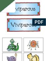 Oviparous and Viviparous Sort