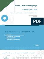 Sintesis 3M Web - Abril 2021 - V2 (1)