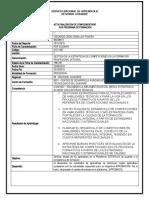 Acta Final Complementaria - Excel