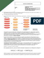 Guía+de+Laboratorio++Estequiometria+-+Soluciones+Química+10º