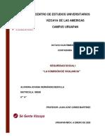 ENSAYO SEGURIDAD SOCIAL - HERNÁNDEZ BEDOLLA