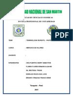Informe Practicas Pre Profesionales..