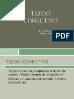 Tejido Conectivo Histo 4