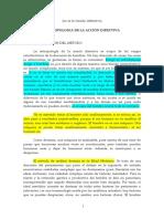 Antropología de la acción directiva