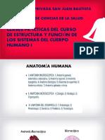 PRÁCTICAS DE ESTRUCTURA Y FUNCIÓN DEL CUERPO   SEM  1