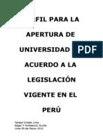 Perfil Para Implementar Una Universidad en Peru 2011