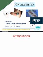 Formato_wiener_PPT - copia