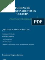 Clase 2 - FORMAS DE FINANCIAMIENTO EN CULTURA