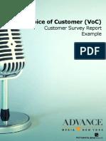 Voice-of-Customer-VoC-Report-Example