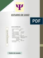 ESTUDIO DE CASO-PASTA BÁSICA DE COCAÍNA
