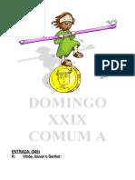 XXIX Comum