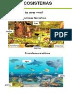 los ecosistemas 5º primaria adaptado