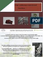 extrait_13-conférence-régénération-de-la-vigne-Vincent-Masson-mars-2019