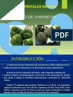 2-CLASE CULTIVO DE CHIRIMOYO-convertido