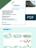4.4. Micro Farmacia_Fagoterapia