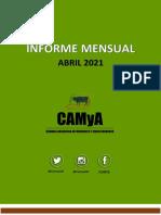 Informe Camya.