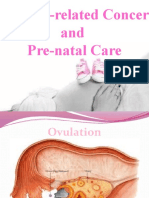 Pregnancy Related Concerns