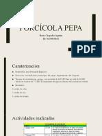 Porcícola Pepa