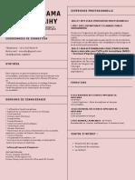 Simple Professionnel Ingénieur logiciel C.V. (1)