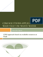 CDM Solutions applicable for Wadi_Anaerobic lagoon