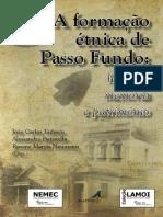 A Formacao Etnica de Passo Fundo Histori