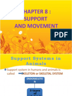 support system in animals and plants