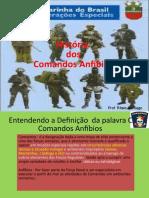 História dos Comandos Anfíbios