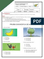 Plan de Clase-prueba Diagnostica Ingles