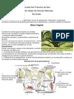 reino vegetal