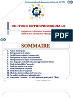 Cours Culture Entrepreneuriale tsge