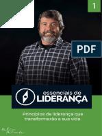 Ebook de Liderança