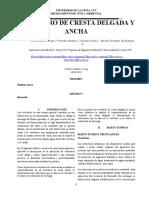INFORME DE LABORATORIO CRESTA ANCHA Y DELGADA