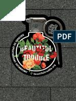 Beautiful_trouble — Копия