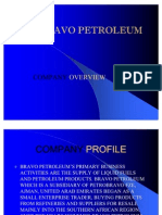 BRAVO PETROLEUM PROFILE[1]