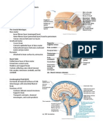 Brain_Protection_and_Disorders_Handouts