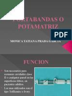 PORTABANDAS O POTAMATRIZ